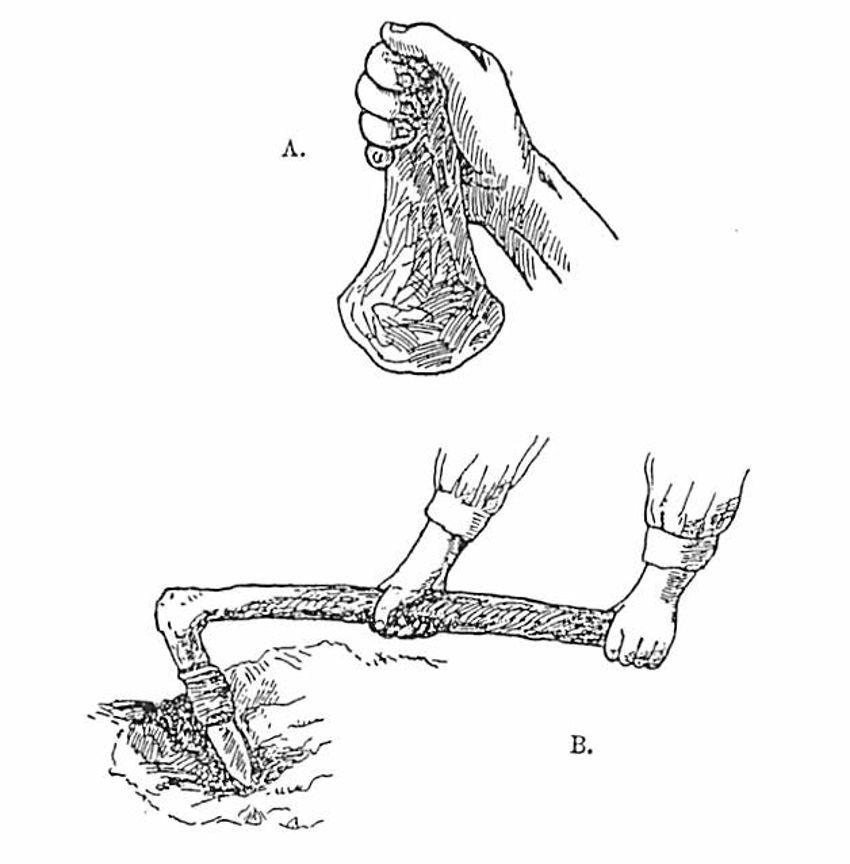 打製石斧の使用方法想像図